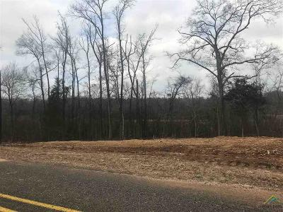 Tyler Commercial For Sale: 11155 Interstate 20