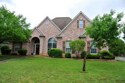 Tyler Single Family Home For Sale: 1225 Riverbend Drive