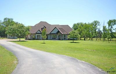 Flint Single Family Home For Sale: 11783 County Road 140
