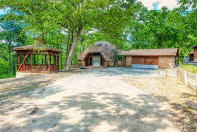 Tyler Single Family Home For Sale: 10219 County Road 1289