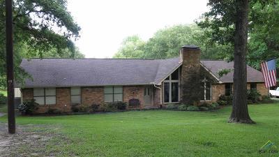 Tyler Single Family Home For Sale: 10558 Lakeshore Dr.