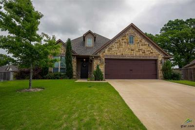 Tyler Single Family Home For Sale: 7252 Morning Mist Ct