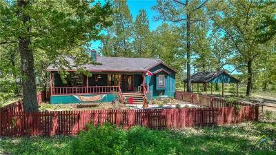 Single Family Home For Sale: 23077 St Hwy 19