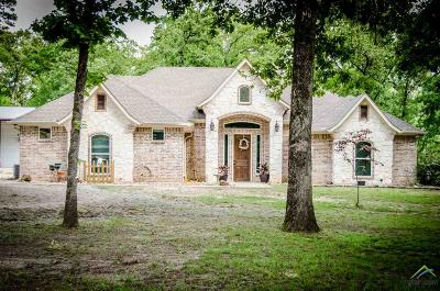 Single Family Home For Sale: 544 County Road 2770