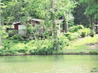 Jacksonville Single Family Home For Sale: 159 County Road 3152
