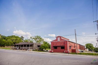 Lindale Commercial For Sale: 305 E Hubbard