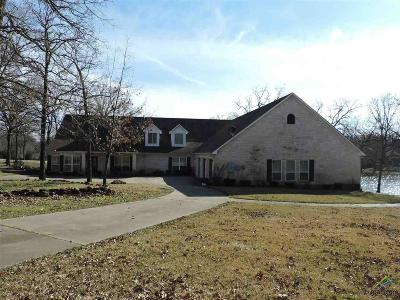 Mabank Single Family Home For Sale: 133 Colonial