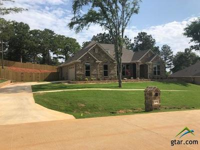 Tyler Single Family Home For Sale: 12146 Hackberry Hollow Dr.