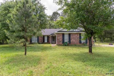 Flint Single Family Home For Sale: 17110 Pennie Ln