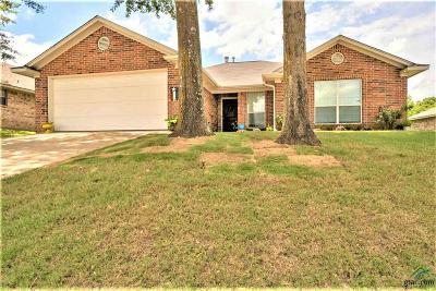Flint Single Family Home For Sale: 19038 Gaines Way