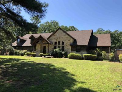 Flint Single Family Home For Sale: 11153 County Road 140