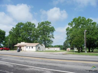 Quitman Multi Family Home For Sale: 1415 N State Highway 37