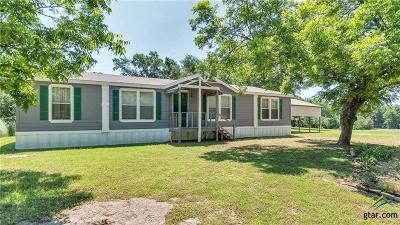 Grand Saline Single Family Home For Sale: 213 Fm 1652