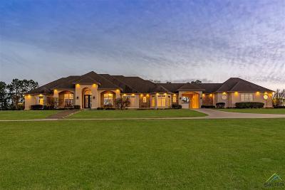 Longview Single Family Home For Sale: 215 Wendy Acres Avenue