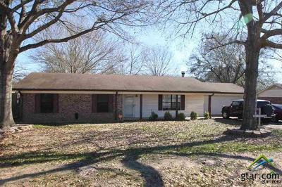 Tyler Single Family Home For Sale: 16757 County Road 178