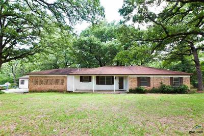 Tyler Single Family Home For Sale: 10986 County Road 2209
