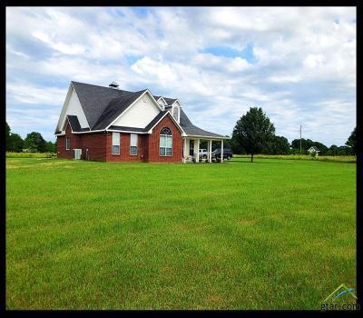 Ben Wheeler Single Family Home For Sale: 244 Vz County Road 4502