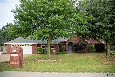Whitehouse Single Family Home For Sale: 508 Maji