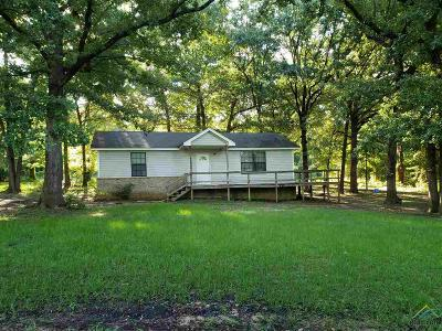 Tyler Single Family Home For Sale: 10360 Walling Drive