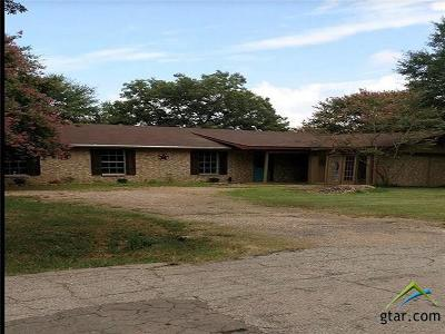 Grand Saline Single Family Home For Sale: 207 La Jodepa