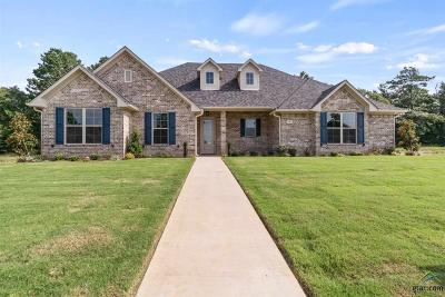 Chandler Single Family Home For Sale: 119 Nathan Drive