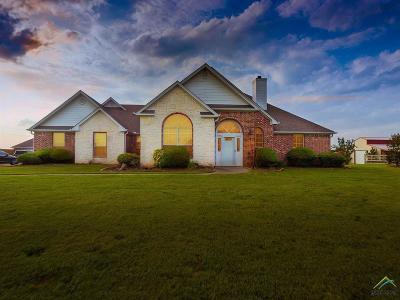 Gilmer Single Family Home For Sale: 1424 Lazy Daisy Rd