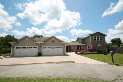 Grand Saline Multi Family Home For Sale: 389 Vz County Road 1606