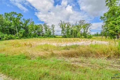 Tyler Residential Lots & Land For Sale: W Lakeshore