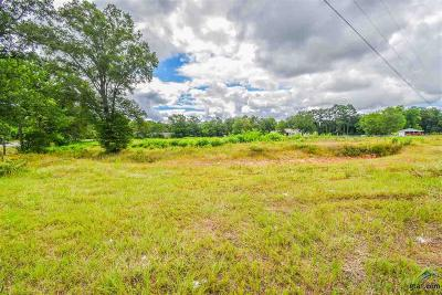 Tyler Commercial For Sale: 12367 W Hwy 64