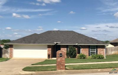 Single Family Home For Sale: 19049 Gaines Way Drive