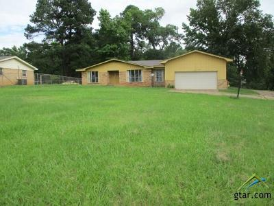 Tyler Single Family Home For Sale: 13533 Us Highway 271
