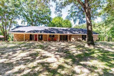 Single Family Home For Sale: 10265 County Road 2188