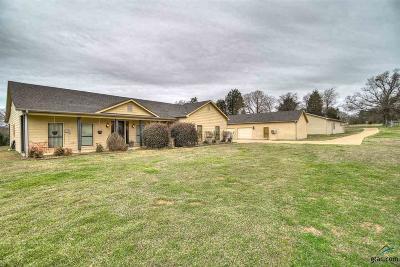 Ben Wheeler Single Family Home For Sale: 488 Vzcr 4504