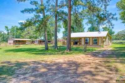 Athens Single Family Home For Sale: 12838 St Hwy 19 N