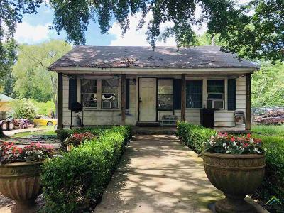 Tyler Single Family Home For Sale: 232 W Dixie Ln.