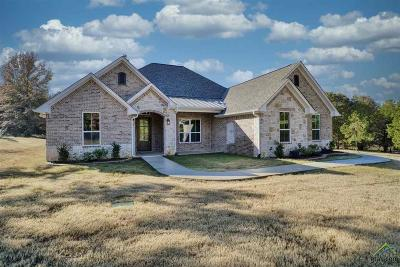Lindale Single Family Home For Sale: 19673 Dove Ridge Lane