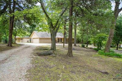 Lindale Single Family Home For Sale: 14120 County Road 431