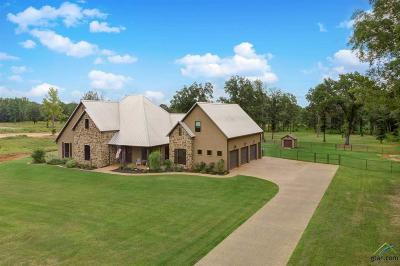Tyler Single Family Home For Sale: 21275 County Road 119