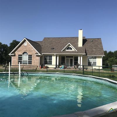 Gilmer Single Family Home For Sale: 331 Pr 4351