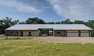 Quitman TX Single Family Home For Sale: $400,000