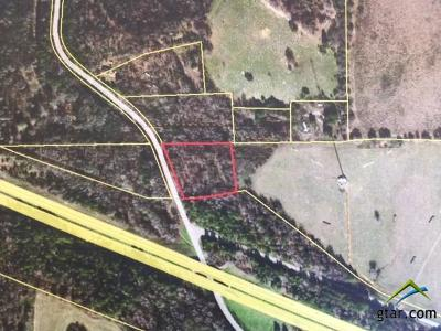 Lindale Commercial For Sale: County Road 496