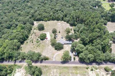 Mineola Single Family Home For Sale: 420 County Road 2460