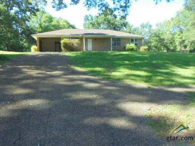 Tyler Single Family Home For Sale: 13567 County Road 472