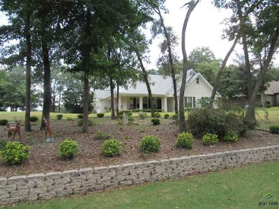 Mineola Single Family Home For Sale: 211 County Road 2308