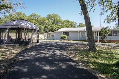Van Single Family Home For Sale: 20454 Fm 1253