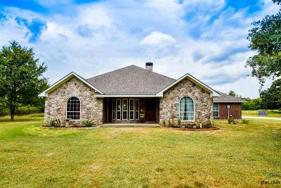 Van Single Family Home For Sale: 750 Vz County Road 1512