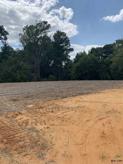 Tyler Commercial For Sale: 13864 Highway 155 S