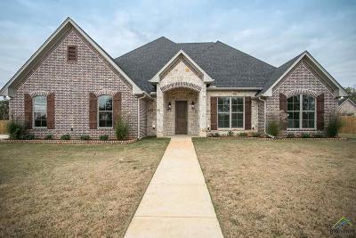 Flint Single Family Home For Sale: 20214 Deer Hollow Drive