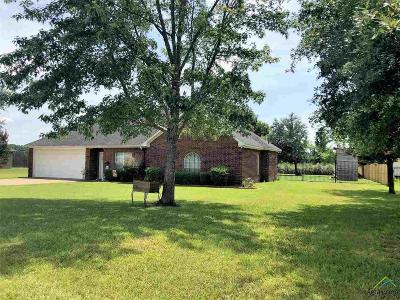 Flint Single Family Home For Sale: 17679 County Road 196
