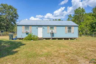 Tyler Single Family Home For Sale: 16197 County Road 285
